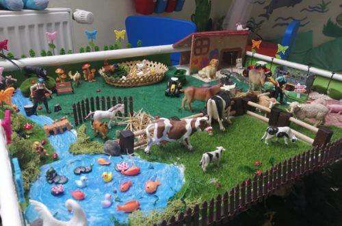 farma, online skolka